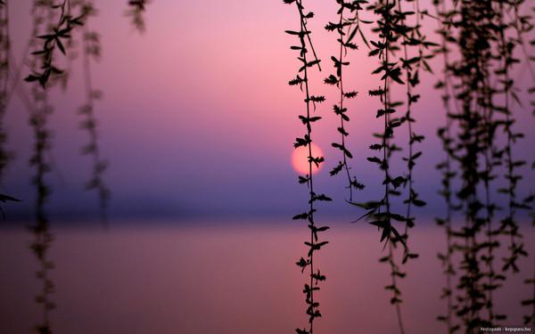 Images coucher de soleil - Page 5 3a8b4f12