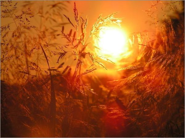 Images coucher de soleil - Page 5 42649d26
