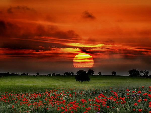 Images coucher de soleil - Page 5 7e5c0b1e