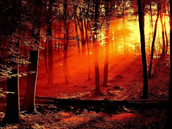 Images coucher de soleil - Page 5 7f5e5af4