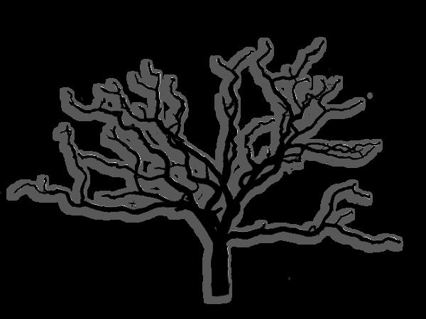 arbre tube png feuilles paysage - Arbre Sans Feuille