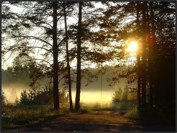 Images coucher de soleil - Page 5 Ebdee76b