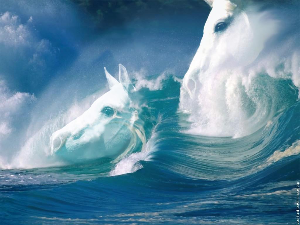 Mer, vagues ,océan
